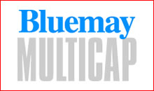 Bluemay Multicap Logo